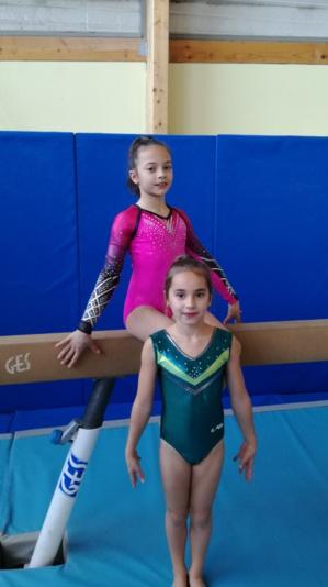 Les gymnastes du département au POLE de SAINT-ETIENNE