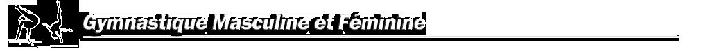 Gym Artistique Masculine et Féminine